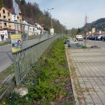 Instandsetzung-B14-Oberndorf-am-Neckar-P1050279